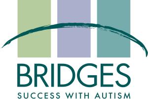 Bridges Logo 2x3 300dpi